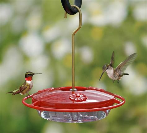 the best hummingbird feeders