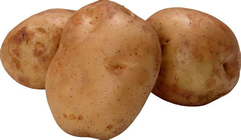 Potato Free by Potatoes Clipart Cliparts Galleries