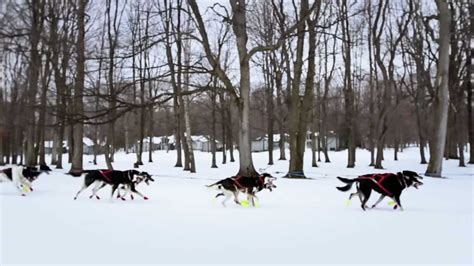 sledding michigan sledding a michigan winter