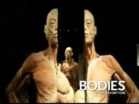 bodiesthe exhibition las vegas youtube
