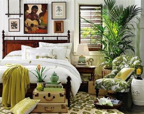 piante da da letto le piante da da letto che rilasciano ossigeno di