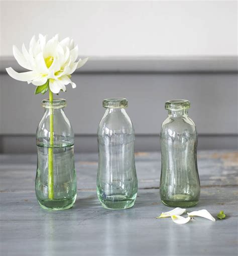 Set Of 3 Glass Vases by Set Of Three Glass Bottle Vases By The Forest Co