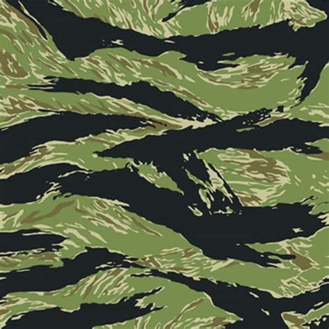 Tiger Camo epochs field guide to camouflage