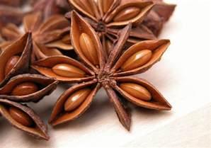 Fruit Tree Spikes - anise star anise stars fruit spice hd wallpaper