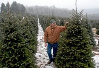 evergreen acres tree voted grand chion at farm show