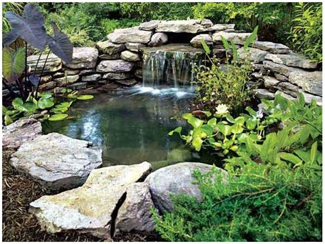 how to make a koi pond in your backyard how to build your own pond backyard fun pinterest