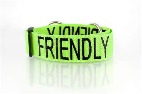 friendly dogs friendly collar friendly collars
