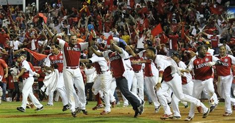 imagenes graciosas leones del escogido historia del baseball dominicano mis tareas