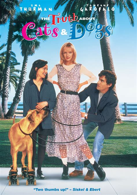 must dogs cast the about cats dogs dvd release date