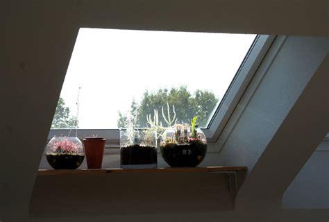 Fensterbrett Dachfenster by Herbst Am Fensterbrett Fotos Gesellschaft F 252 R