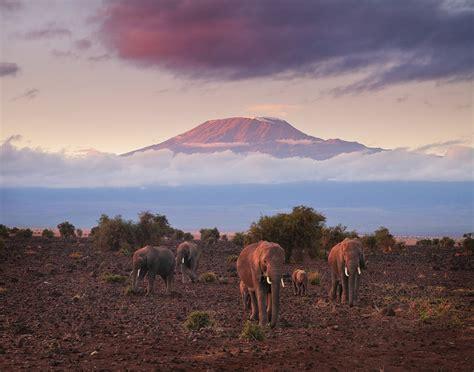 Boneka Grassland By Elie Gallery color kenya travels florida landscape photography by
