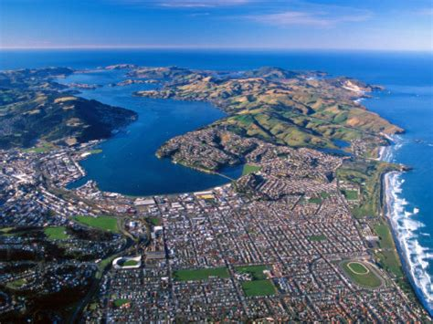 Lookup New Zealand Dunedin New Zealand Hotelroomsearch Net