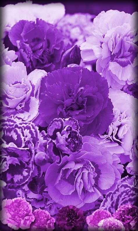 Gamis Ve Mawar 958mwr Blue Purple Flowers Live Wallpaper Android Apps On Play