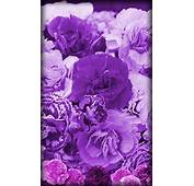 Purple Flowers Live Wallpaper  Android Apps On Google Play
