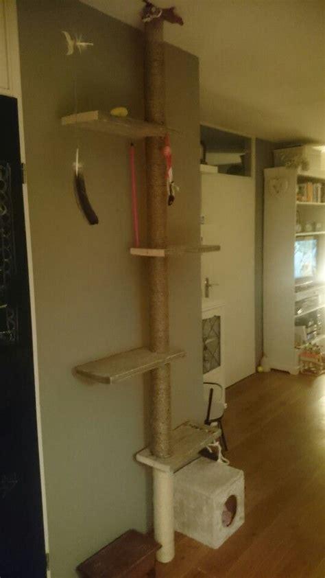 krabpaal plafond steigerhouten krabpaal geklemd tussen vloer en plafond