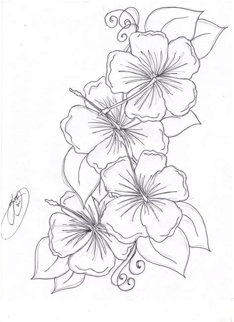 flower tattoo outline designs 22 best hibiscus designs