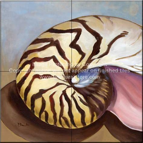 fliese nautilus bathroom ceramic tiles decorative shell tiles nautilus