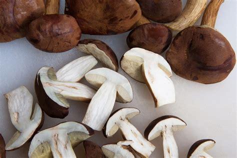come cucinare funghi porcini surgelati come cucinare i funghi porcini un classico 232 il risotto