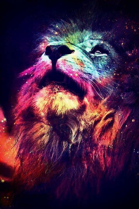 imagenes de leones hipster yolo galaxy wallpaper wallpapersafari