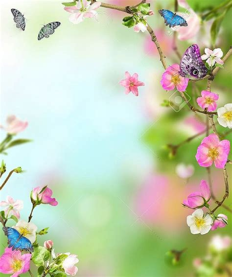 719 Best Borders Floral Images On Pinterest Backgrounds Flowers Nature Border Powerpoint Templates Flowers
