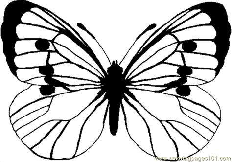 coloring pages of big butterflies coloring pages color butterfly4 big insects gt butterfly