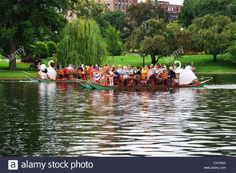 swan boats boston public garden swan boat ride in public garden boston commons park
