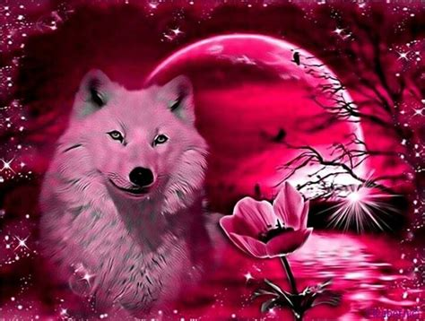 cool wallpaper of wolves cool wolf wallpapers wallpapersafari