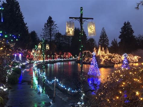 ardmore festival of lights 2017 vandusen festival of lights 2017 2018 vancouver blog