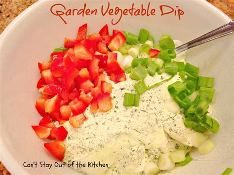 Garden Vegetable Ranch Dip Can T Stay Out Of The Kitchen Garden Vegetable Dip