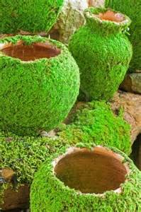 reubens lawn care how to make your own moss landscape