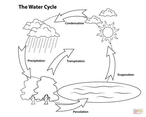 blank water cycle diagram water cycle diagram diagram site