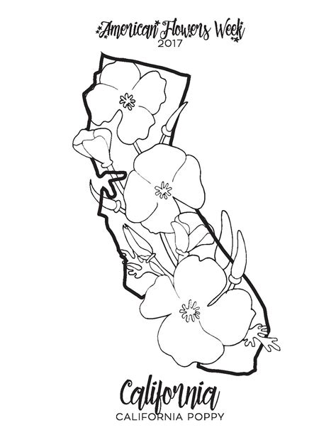 california coloring pages 50 state flowers free coloring pages american flowers week