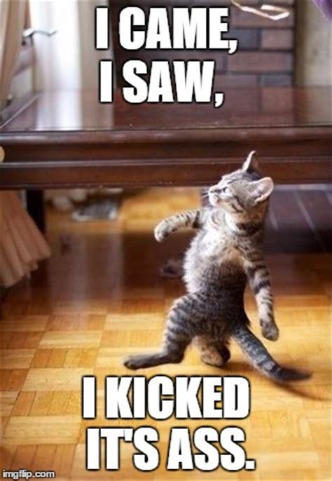 Came Meme - cool cat stroll meme imgflip