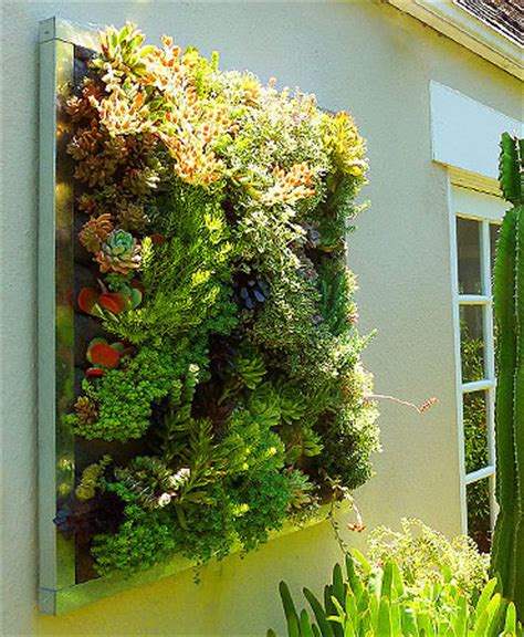 floraframe living wall kit modern outdoor pots and