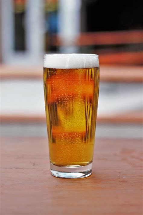 best pilsner 25 best ideas about bohemian brewery on