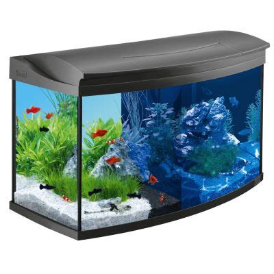 tetra aquaart aquarium komplett set 100 l g 252 nstig bei zooplus - Aquarium 100 L