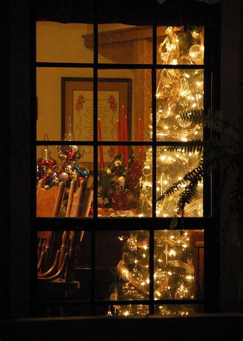 353 seeing christmas trees through the window 1000