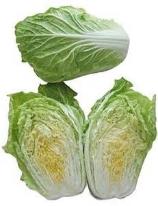 what are the different types of cabbage blurtit