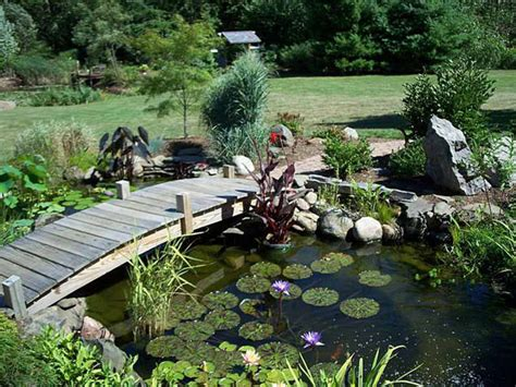 pond ideas backyard ponds with bridge residential pond