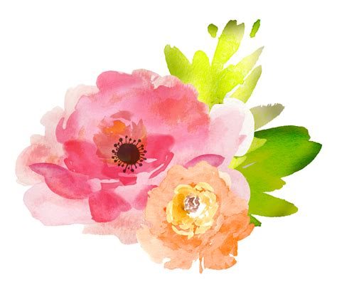 water color flower free watercolor floral elements pretty free pretty