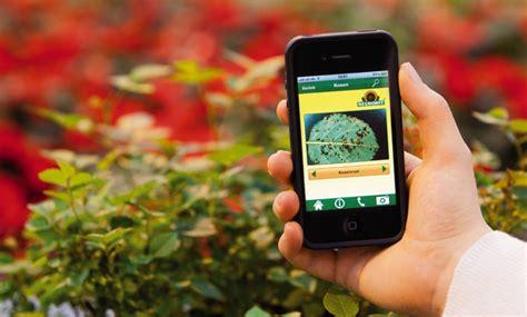 Garten Pflanzen Bestimmen App by Pflanzen Bestimmen App Gr 228 Ser Im K 252 Bel 252 Berwintern