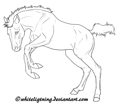 coloring pages of horses and foals free lineart jumping foal by whiteligtning on