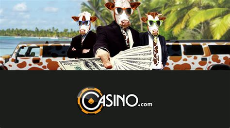 Cash Cow Giveaway - cash cow promotion at casino com casinotopsonline com