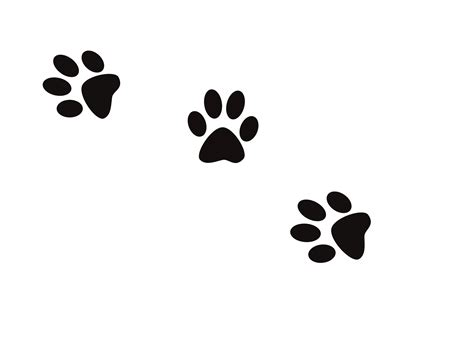 puppy prints conjuring creek boarding kennels news