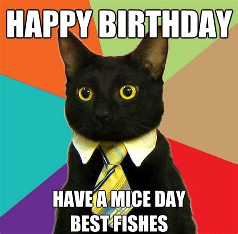 Cat Birthday Memes - incredible happy birthday memes for you top collections