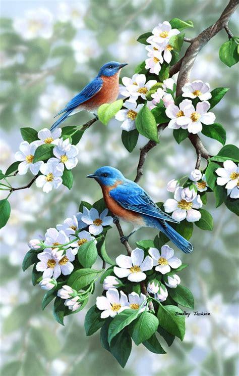 best 25 artificial birds ideas on pinterest tropical best 25 colorful birds ideas on pinterest pretty birds