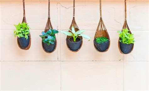 best small hanging plants 70 hanging flower planter ideas photos and top 10