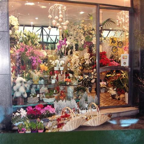 fioristi pavia fiori e piante a pavia infobel italia