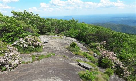 appalachian trail section hikes 10 best appalachian trail section hikes from georgia to