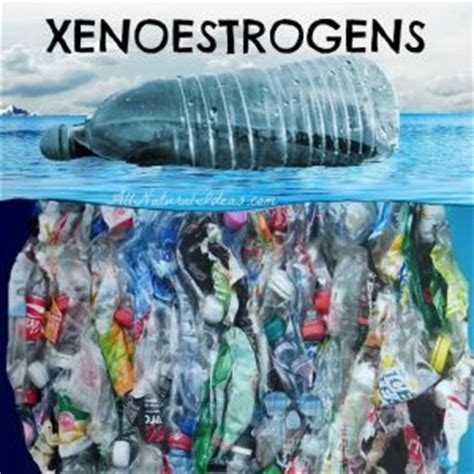Xenoestrogens Detox by Fiber Clothing Benefits All Ideas
